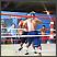 Sinhronizirano prvenstvo u boksu