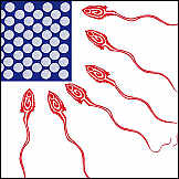 Američka zastava