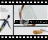 10 činjenica o vinu