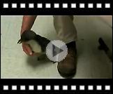 Što se događa ako golicete pingvina?