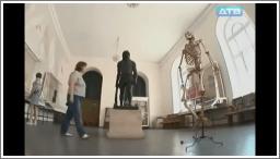 Tko se boji kostura