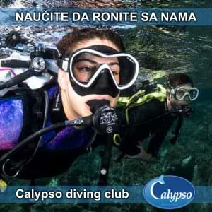 Calypso divin club
