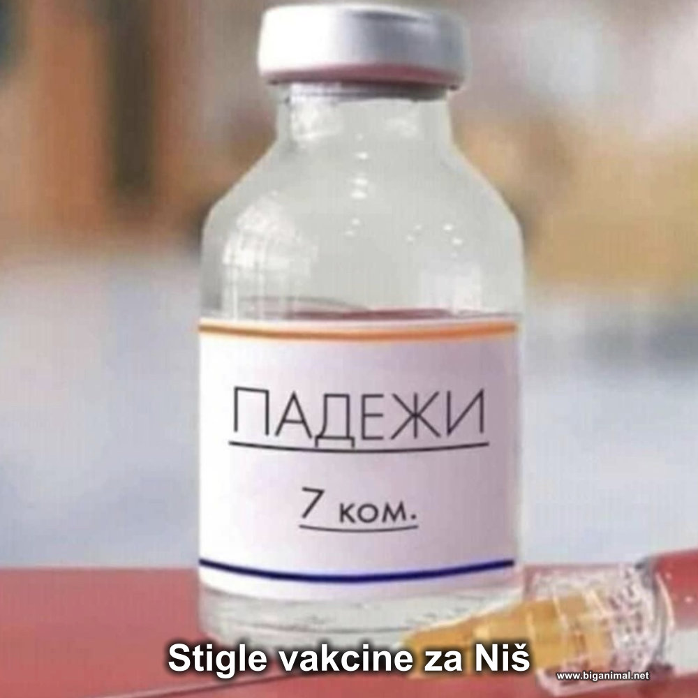 Stigle vakcine za Niš