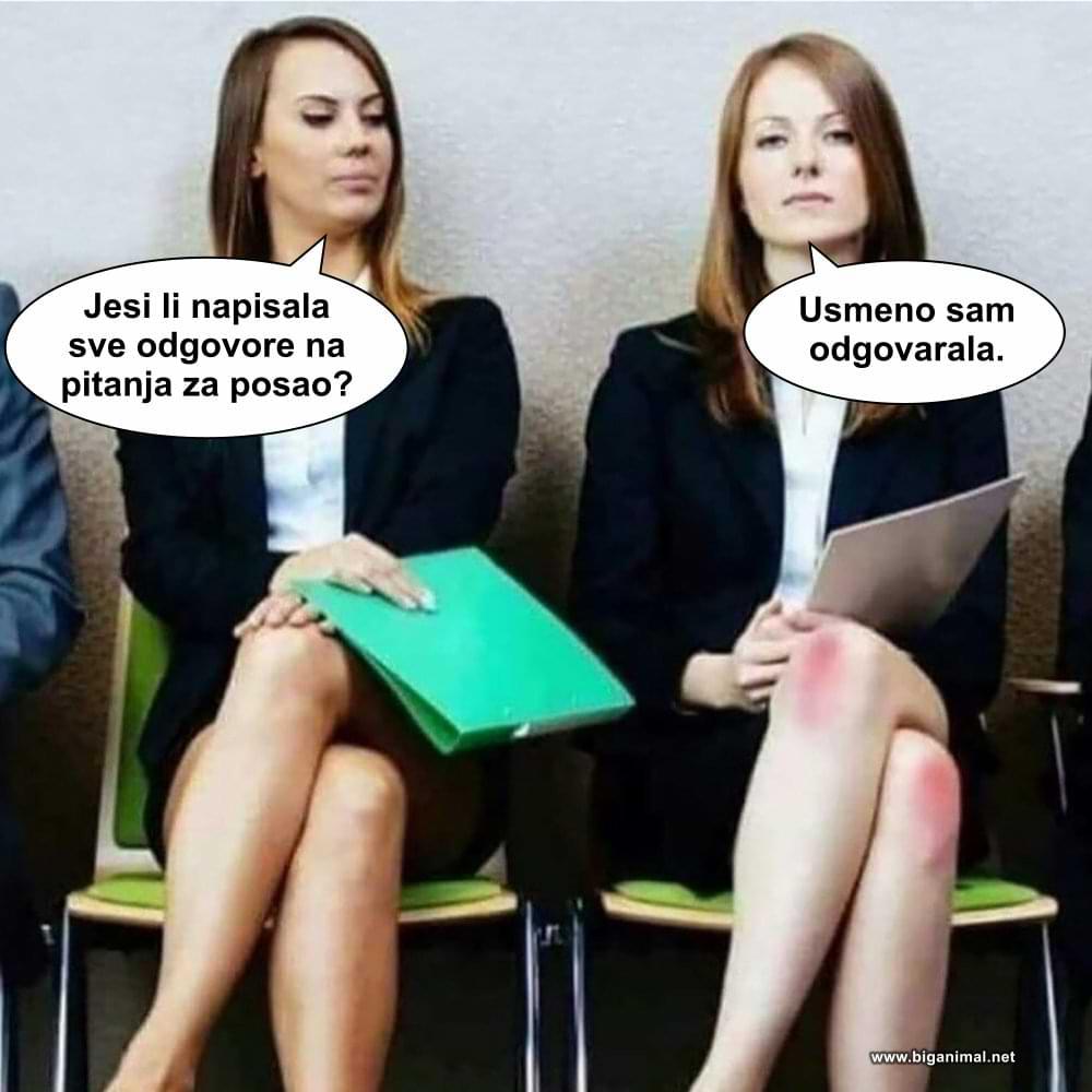 Šta mislite, koja je dobila posao?